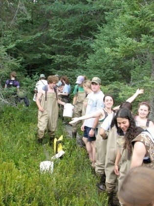 Field work in a bog at UNDERC-East